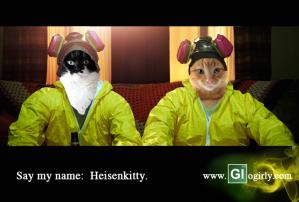HeisenKittyGlogirlysm