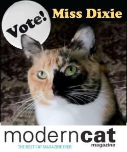 Miss Dixie